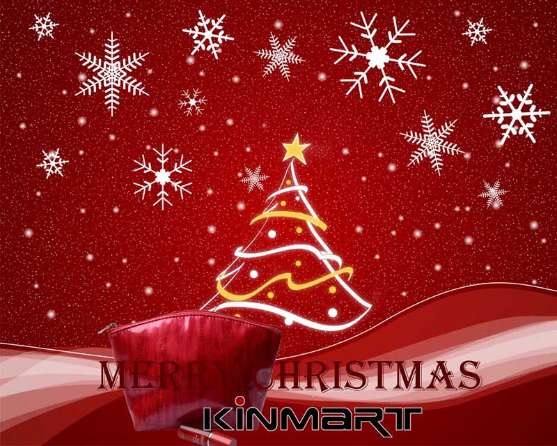 Merry Christmas & Happy New Year 2013 - Greetings from Kinmart